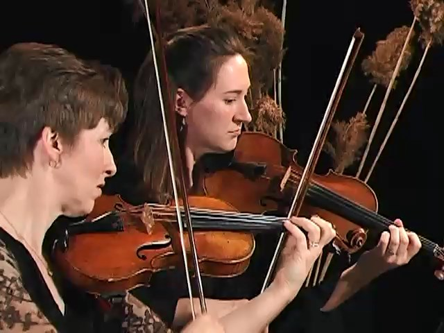 Molto Allegro, String Quartet No. 14 - Mozart